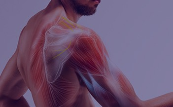 What do you do if your shoulder hurts? Search for a shoulder pain doctor near me who deals with shoulder injuries, shoulder problems, and shoulder pain.